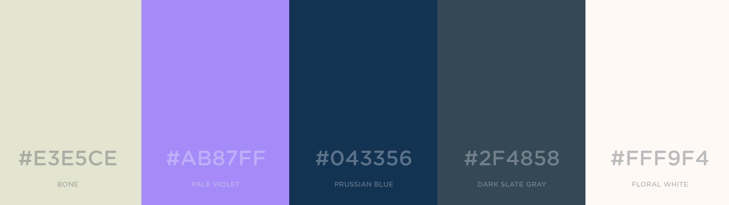 color palettejacket.jpg