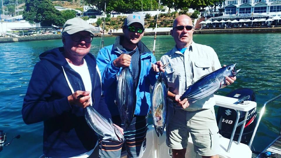 Skipjack Tuna Fish.jpg