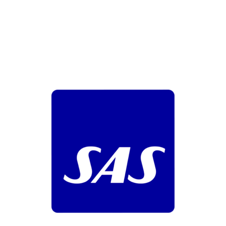 SAS – A coherent design system