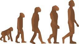 evolution-24560_1280_retouchée.png