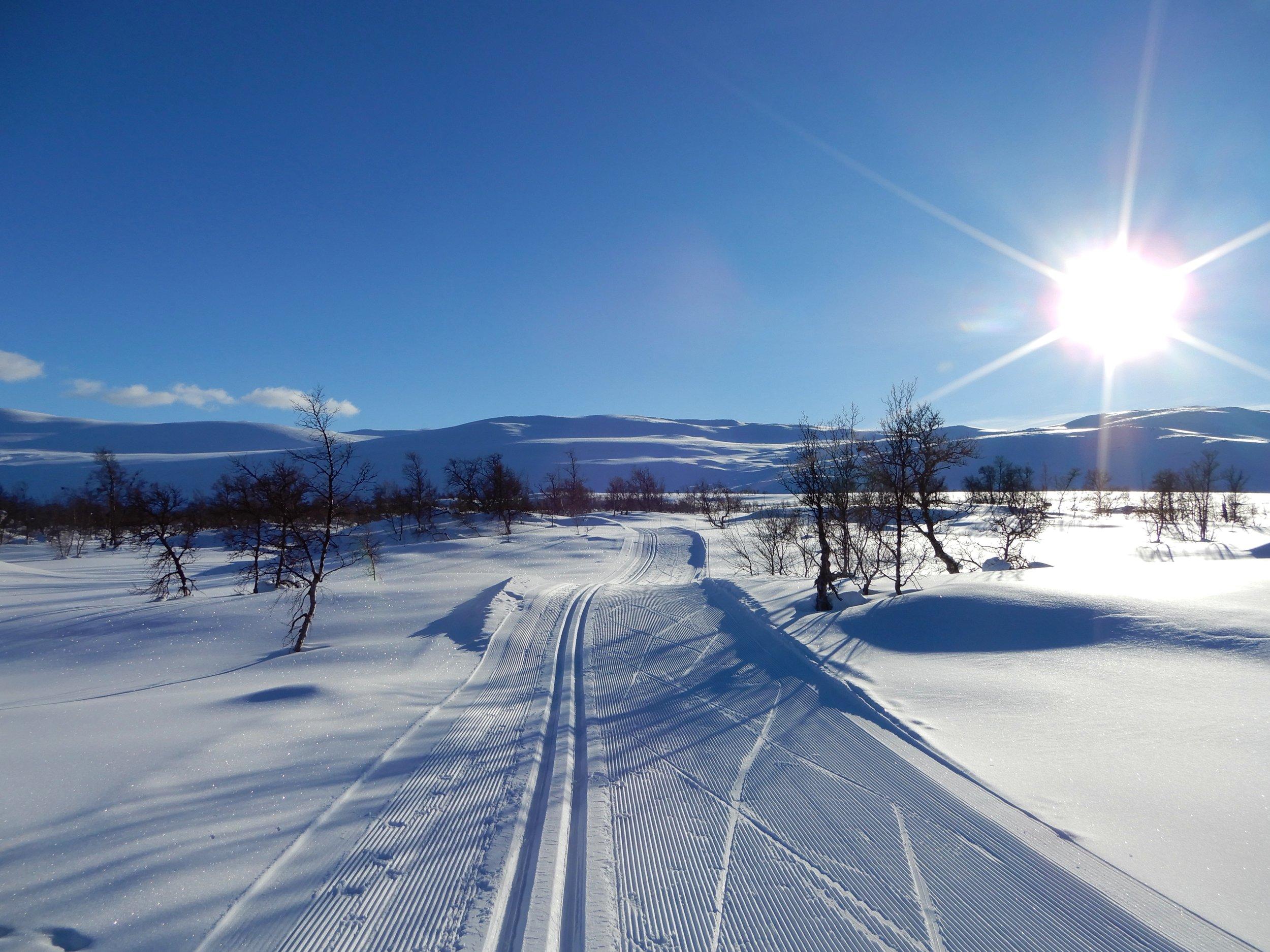 Sol og skiløype Åsen.jpg
