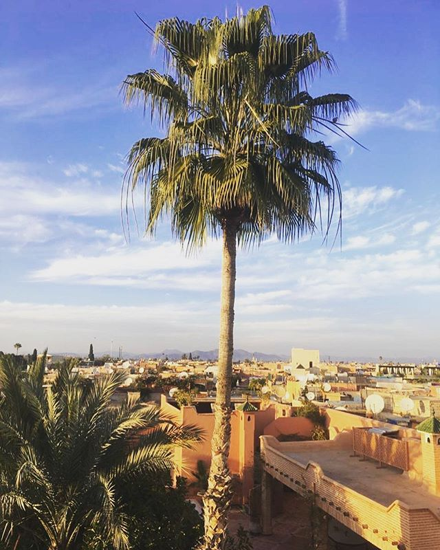 A glorious ending to 2018, with wishes to all from Marrakesh