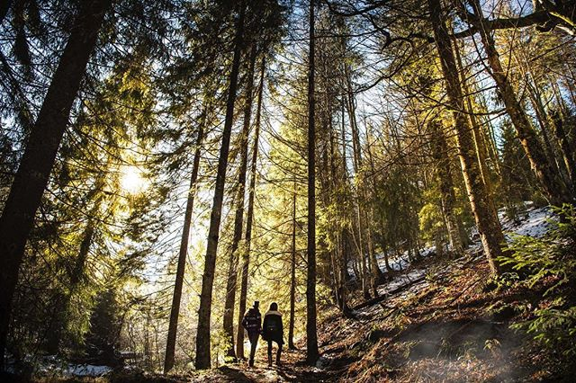 We know the weather is less than ideal, but bundle up and take a hike! This will help your mind and body, especially if you've been feeling cooped up lately ❄️
