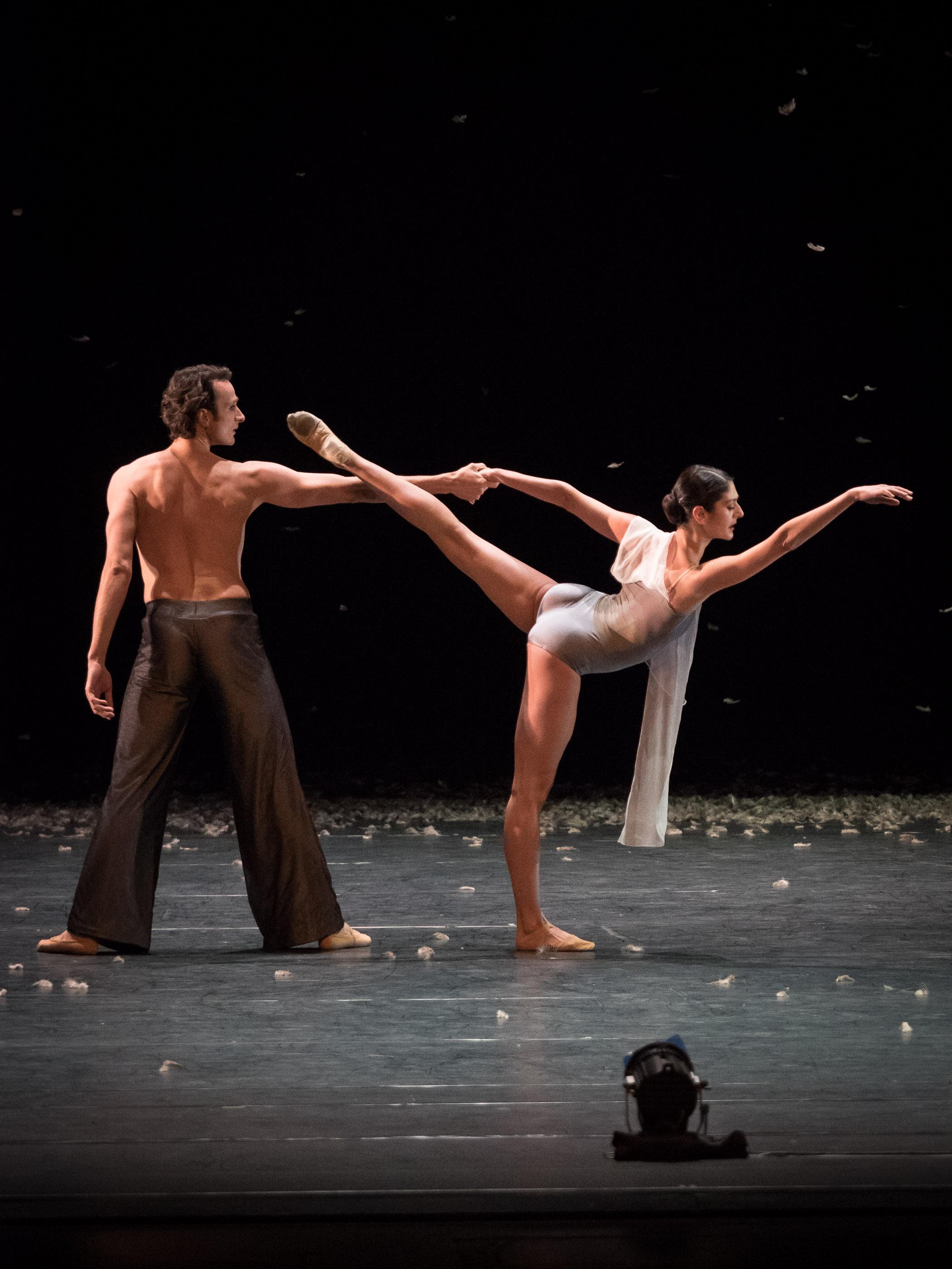 Copyright: Ashley Taylor / Vienna State Ballet