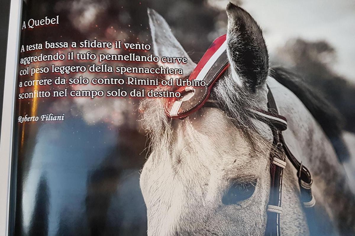 Foto da Duccio!_1200.jpg
