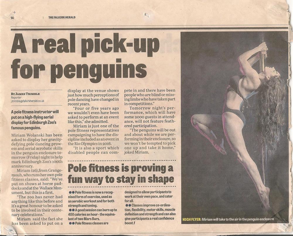 pick-up-for-penguins.jpg