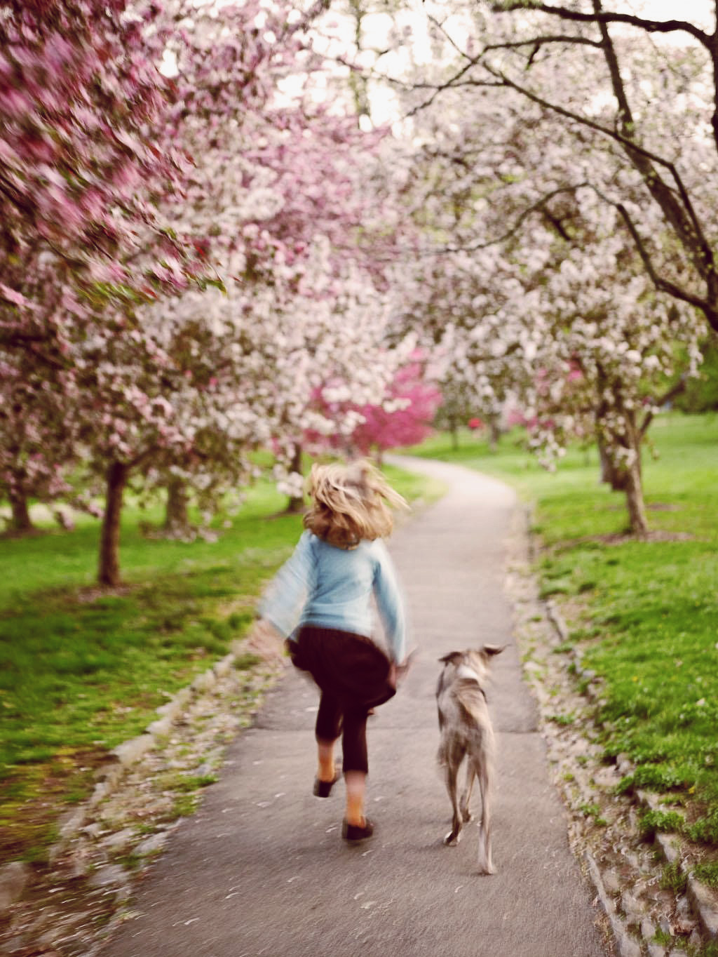 fb_girldog.jpg