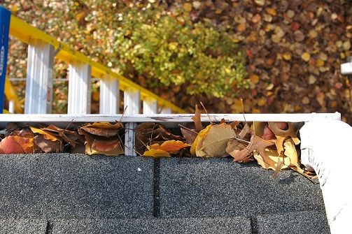 gutters-compressed.jpg