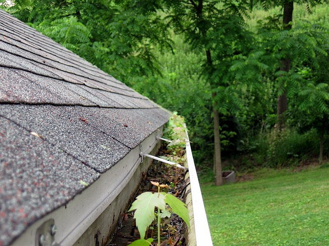 """Don't Wait Until the Next Rainy Season: Gutter Cleaning 101 - """"Gutters have one basic purpose - to control the force of rainwater as it flows from your roof, in order to direct this water away from your home's foundation. This simple but important job is dependent on a clear path for this water to flow, and having too much debris in your gutters can impede this flow. This is why gutters must be cleaned out regularly. Let's explore some of the problems that can occur if your gutters are not regularly cleaned out and maintained, causing them to have clogs - some of these problems can be catastrophic!""""Tracy Ezell - Higher Ground Rainwater Systems of Asheville"""