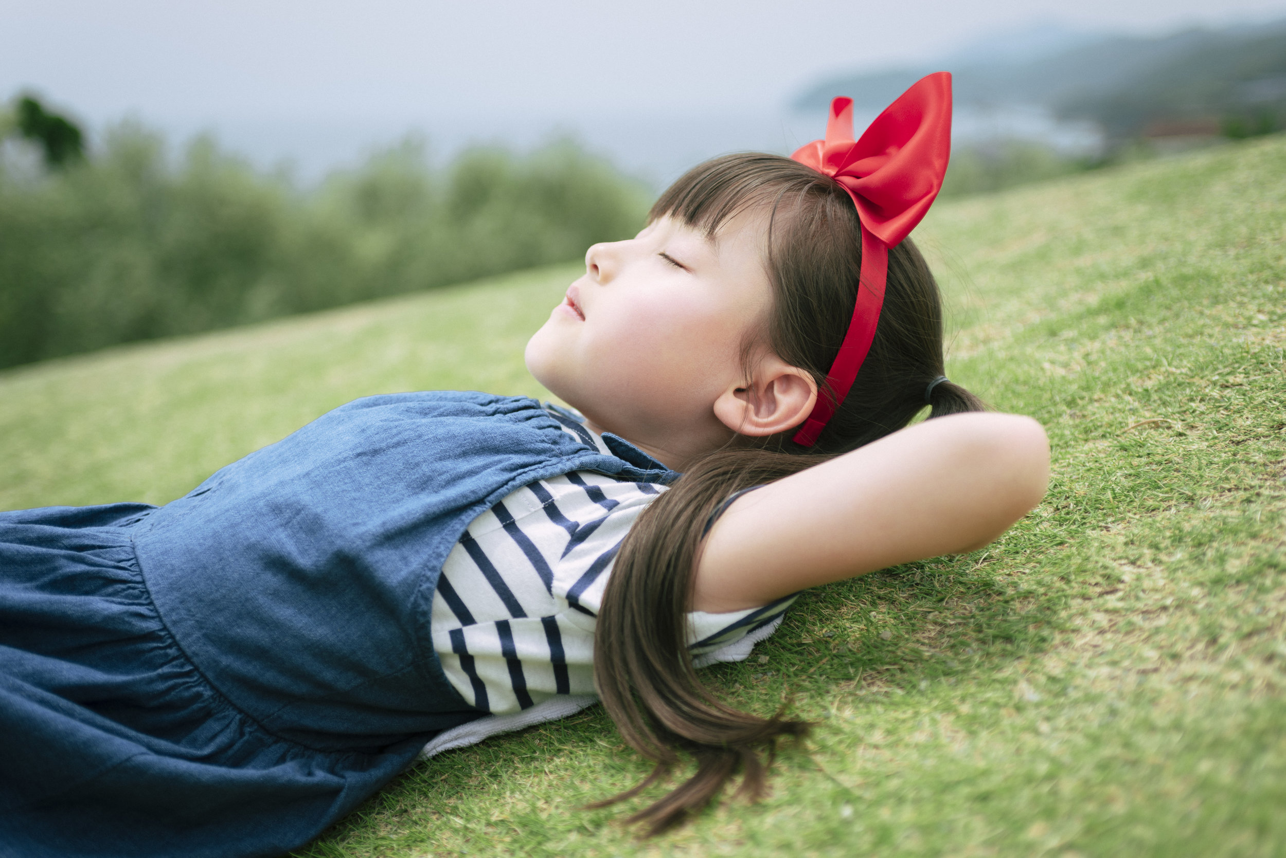 Shodoshima Island Visual 3.jpg