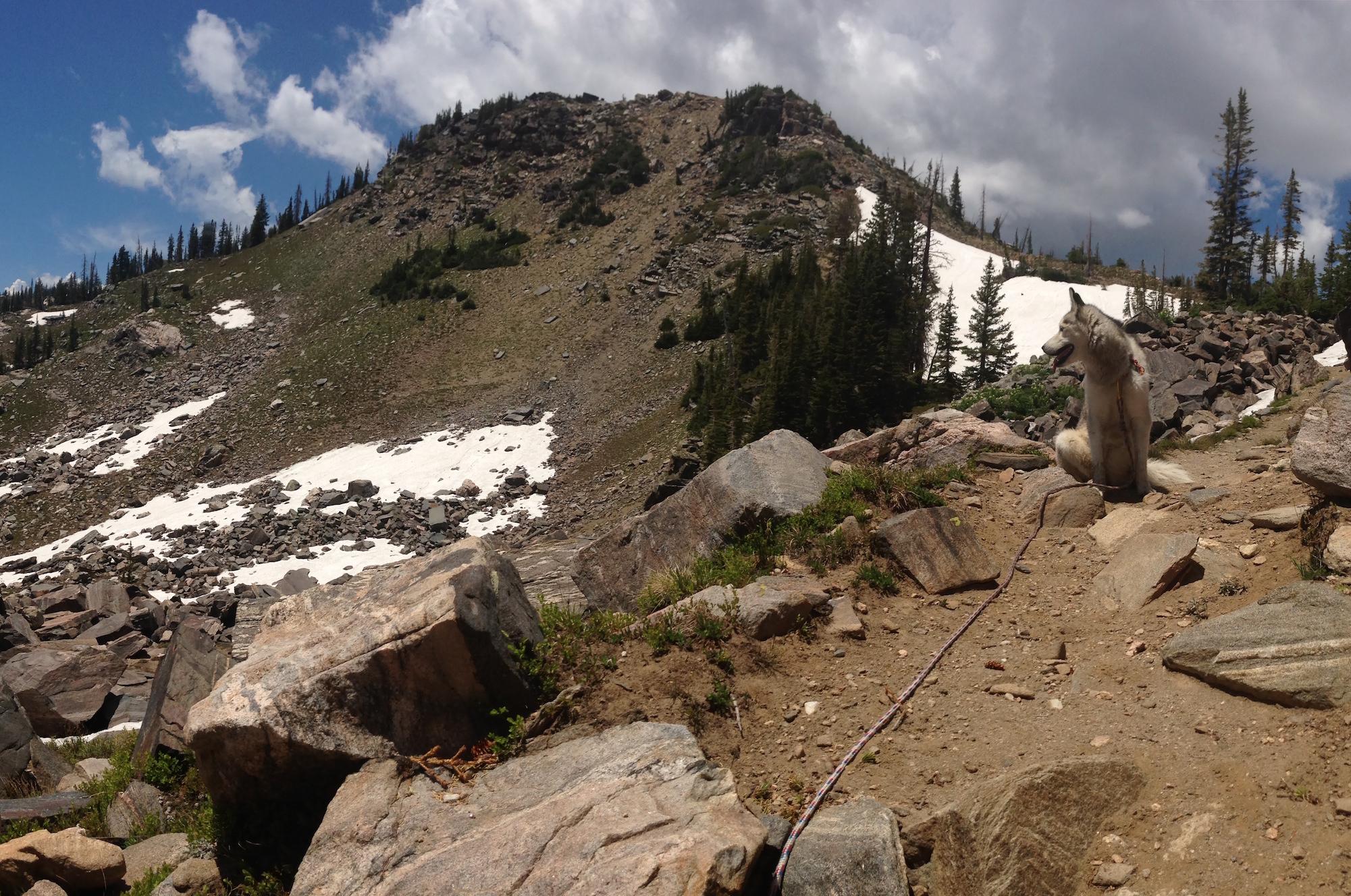 Mt Zirkel Wilderness CO