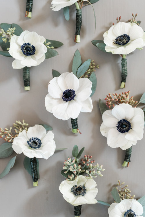 Featured Winter Bloom: Anemones, Photo Credit:  Audrey Rose Photography.