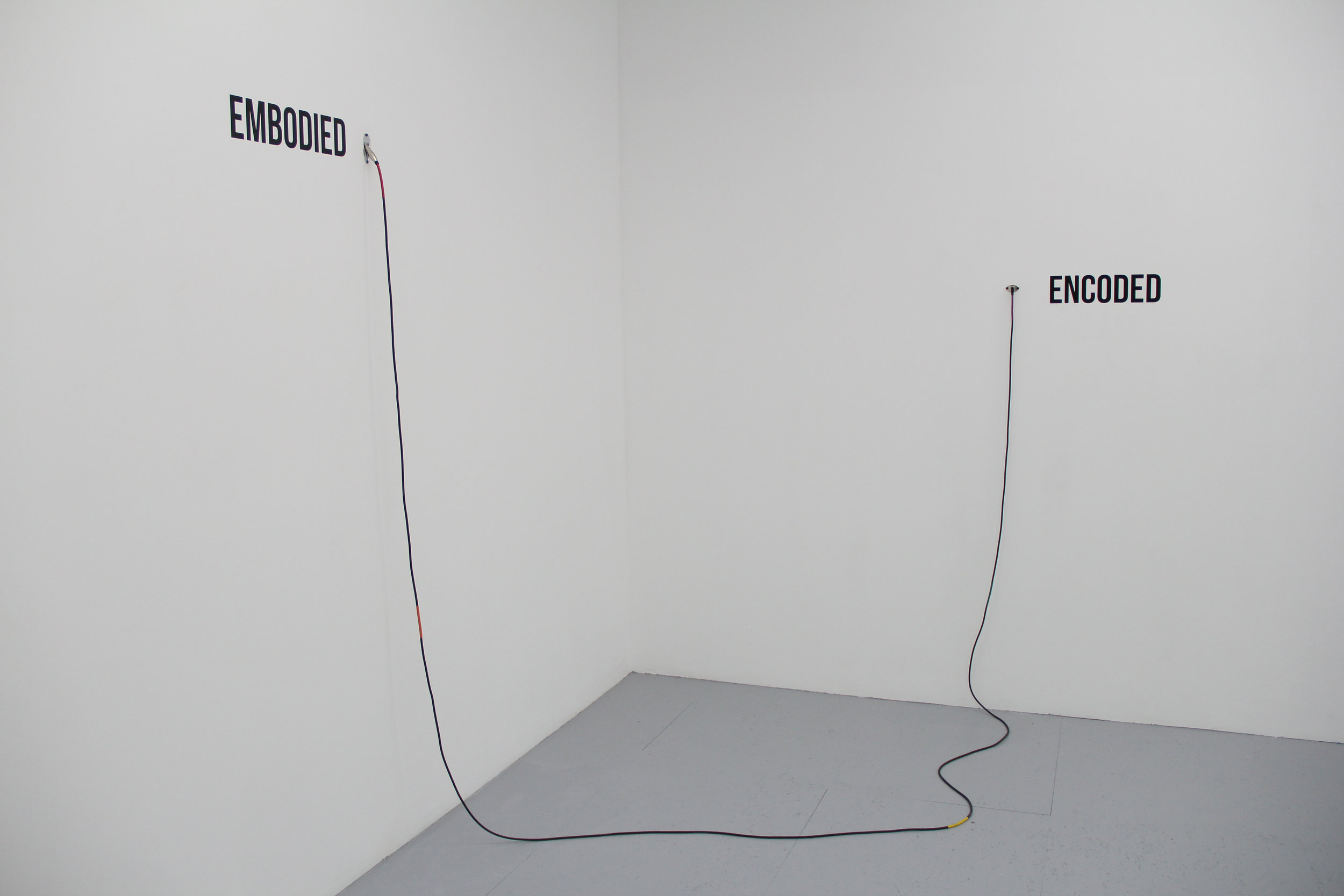 Antonin Gerson,  Encoded to Embodied / Embodied to Encoded, Input Insitu,  Installation, techniques mixtes, dimensions variables, 2018