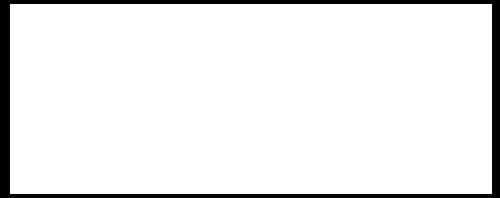 ENVI - White Logo.png