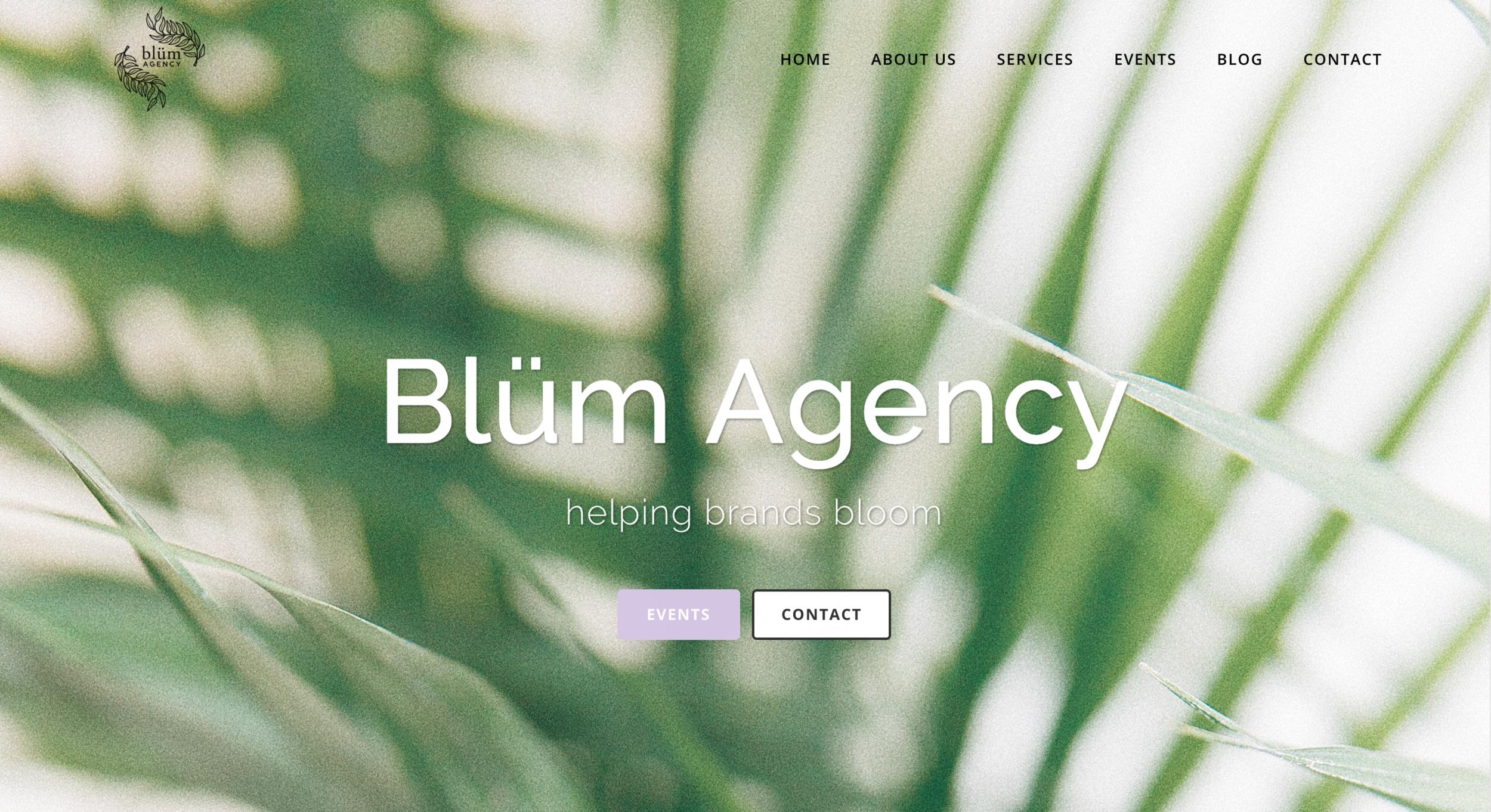 Blüm Agency Website Digital Marketing San Diego.png