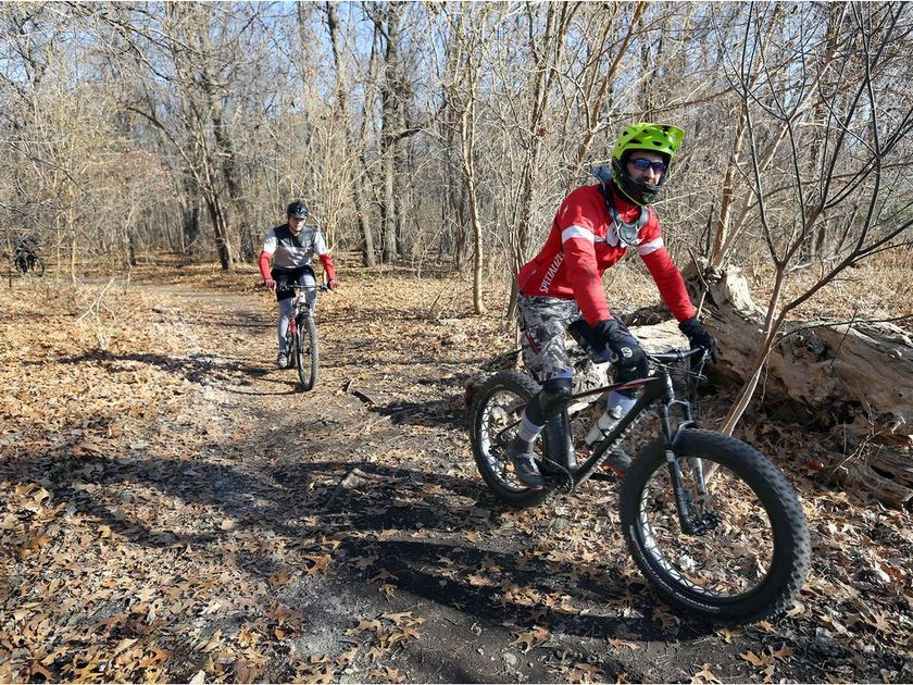 The unauthorized use of trails in Black Oak Heritage Park causes extensive damage to the rare habitats and species within the park. (Photo: NICK BRANCACCIO/Windsor Star)