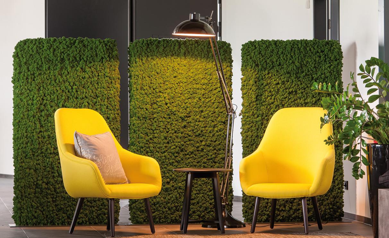 Moss dividing walls.jpg