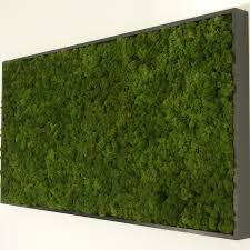 Moss Panel.jpg