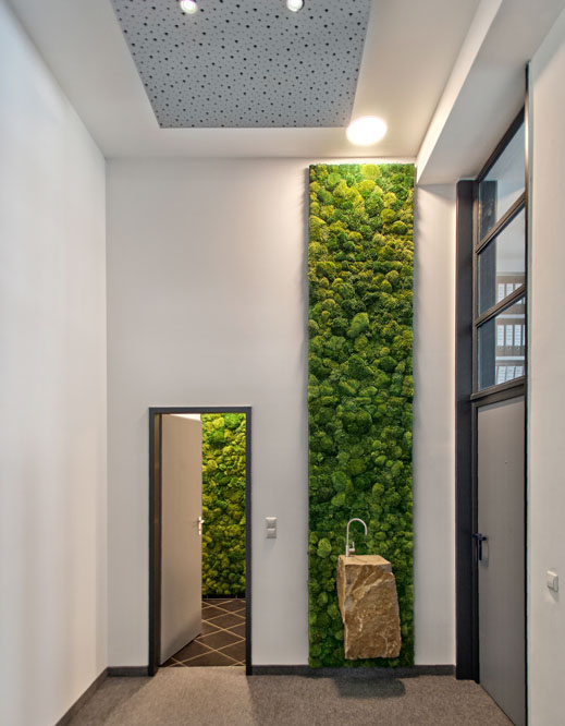 Fountain moss wall.jpeg