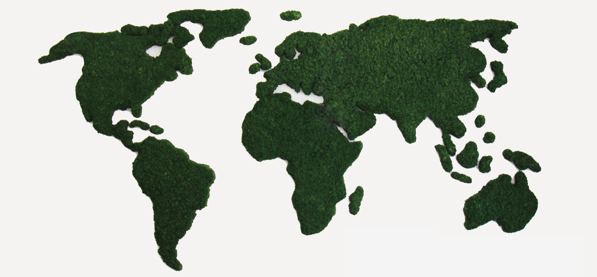Moss global map.jpg