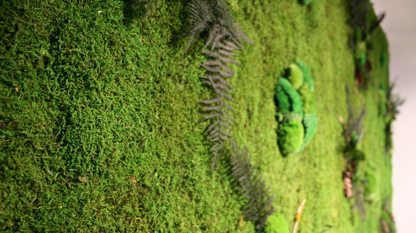 Forest Moss.jpg