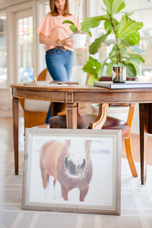 Equestrienne-Decor-Brand-Photography-Orlando-14.jpg