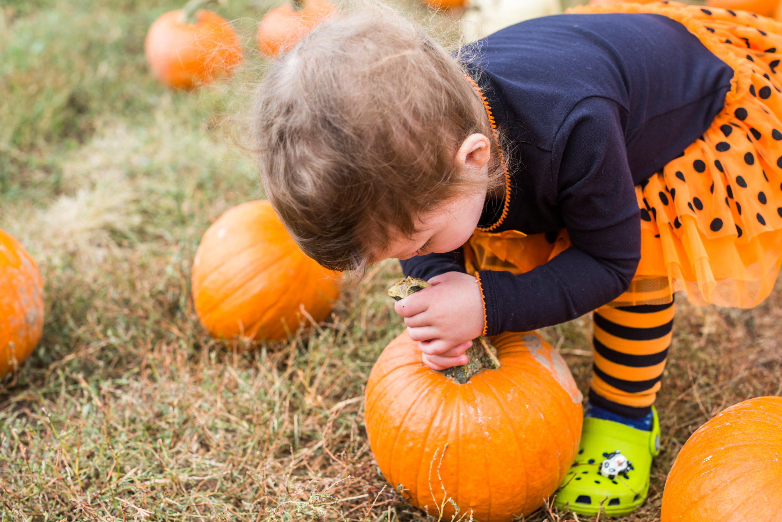 Association Management Group Offers Community Safety Tips For Halloween