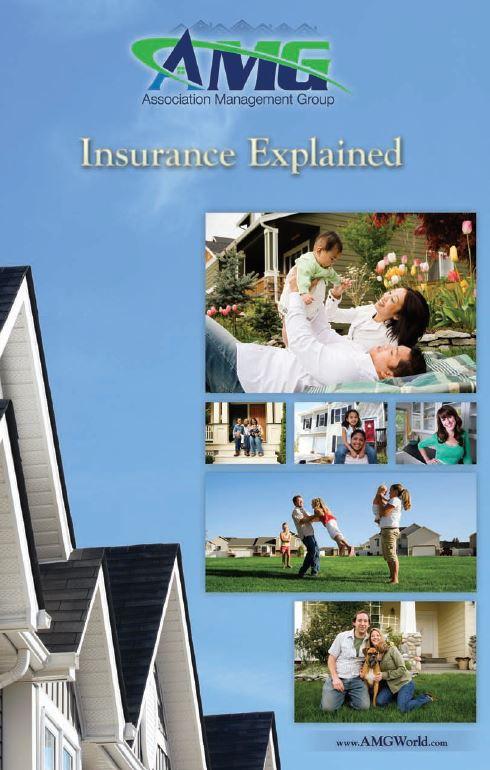 insurance explained.JPG