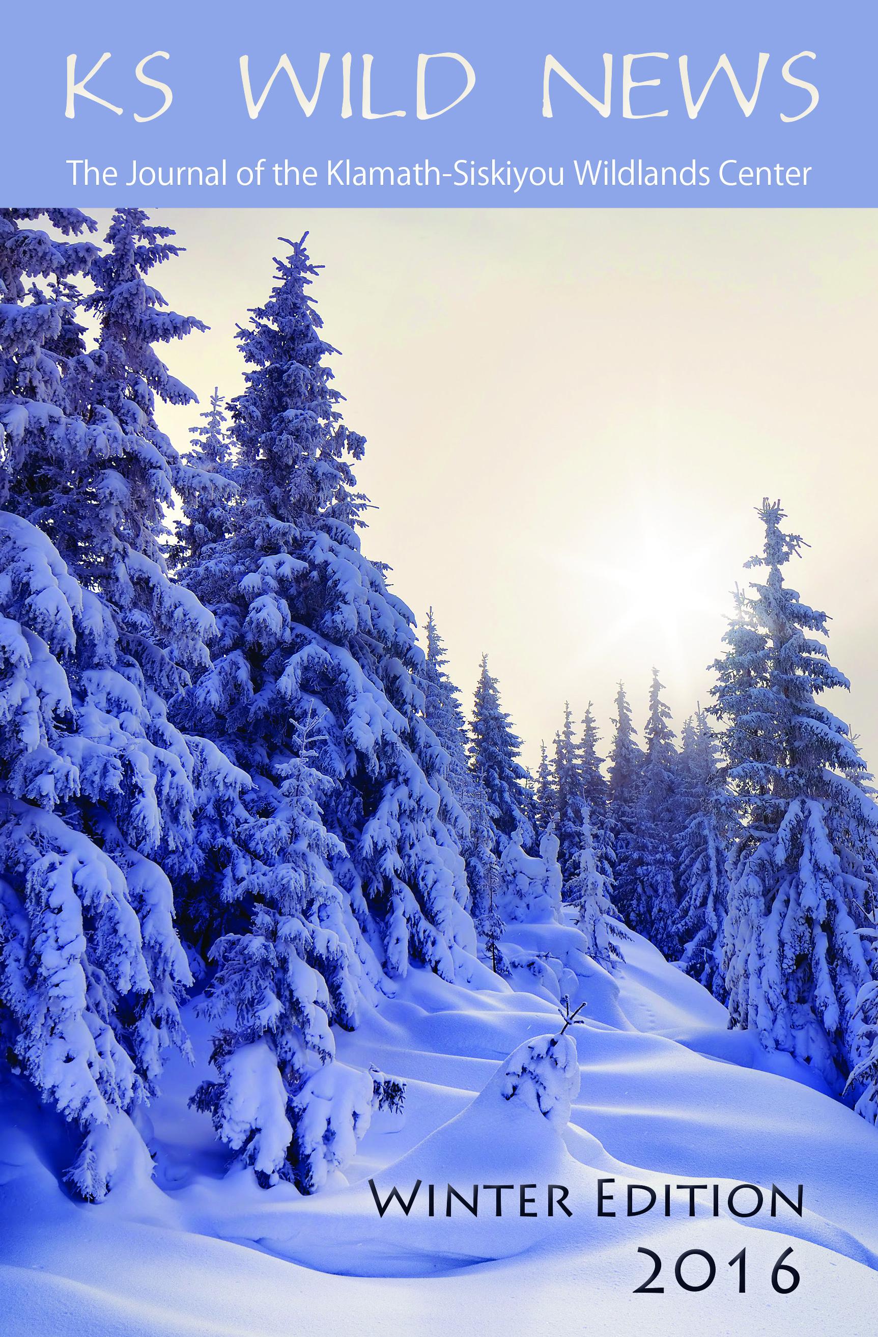 Winter 2016/2017 Newsletter