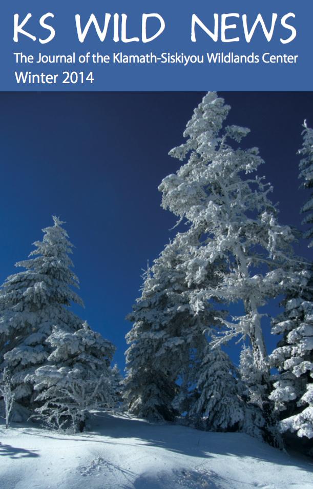 Winter 2013/2014 Newsletter