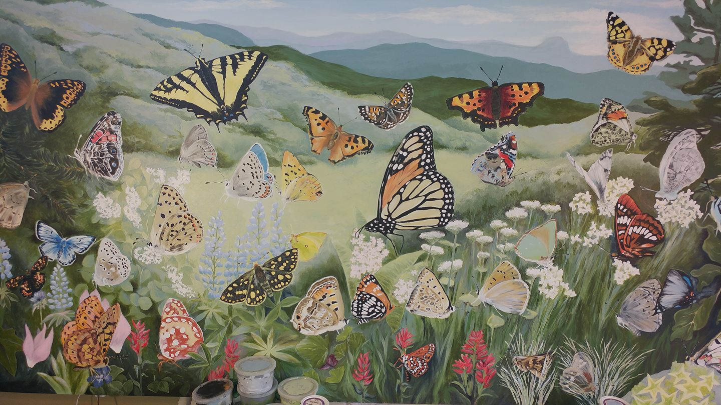 "The finished painting, ""Butterfly Diversity of the Cascade-Siskiyou"" is now up for auction! Proceeds will go to KS Wild for the protection of the Cascade-Siskiyou National Monument."