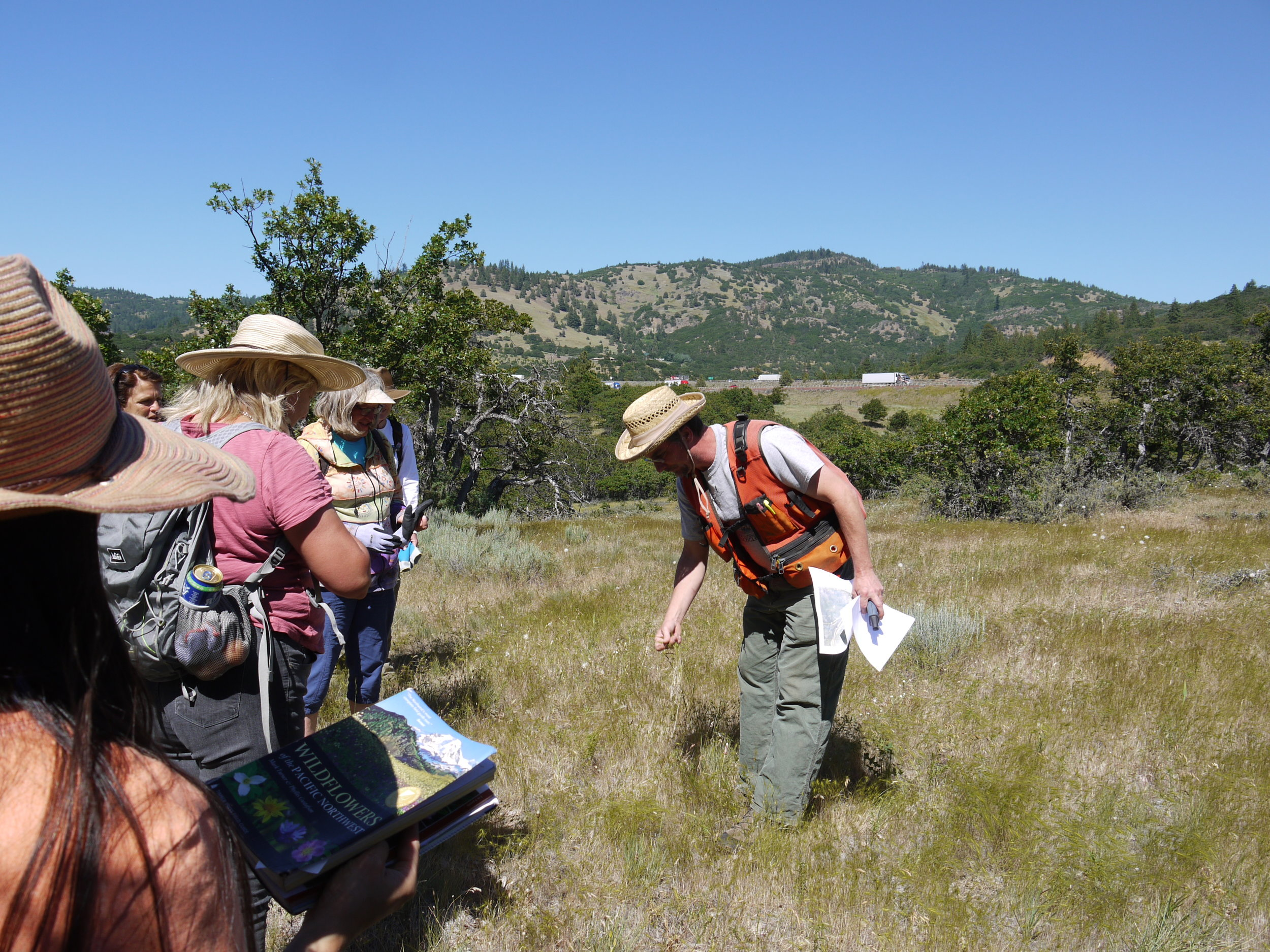 Volunteers assist in identifying rare plants and pulling invasive weeds during the Annual Star Thistle Pull at the Mariposa Preserve in the Cascade-Siskiyou National Monument, a collaboration with the Medford BLM office, Native Plant Society of Oregon Siskiyou Chapter, and Friends of the Cascade-Siskiyou National Monument.