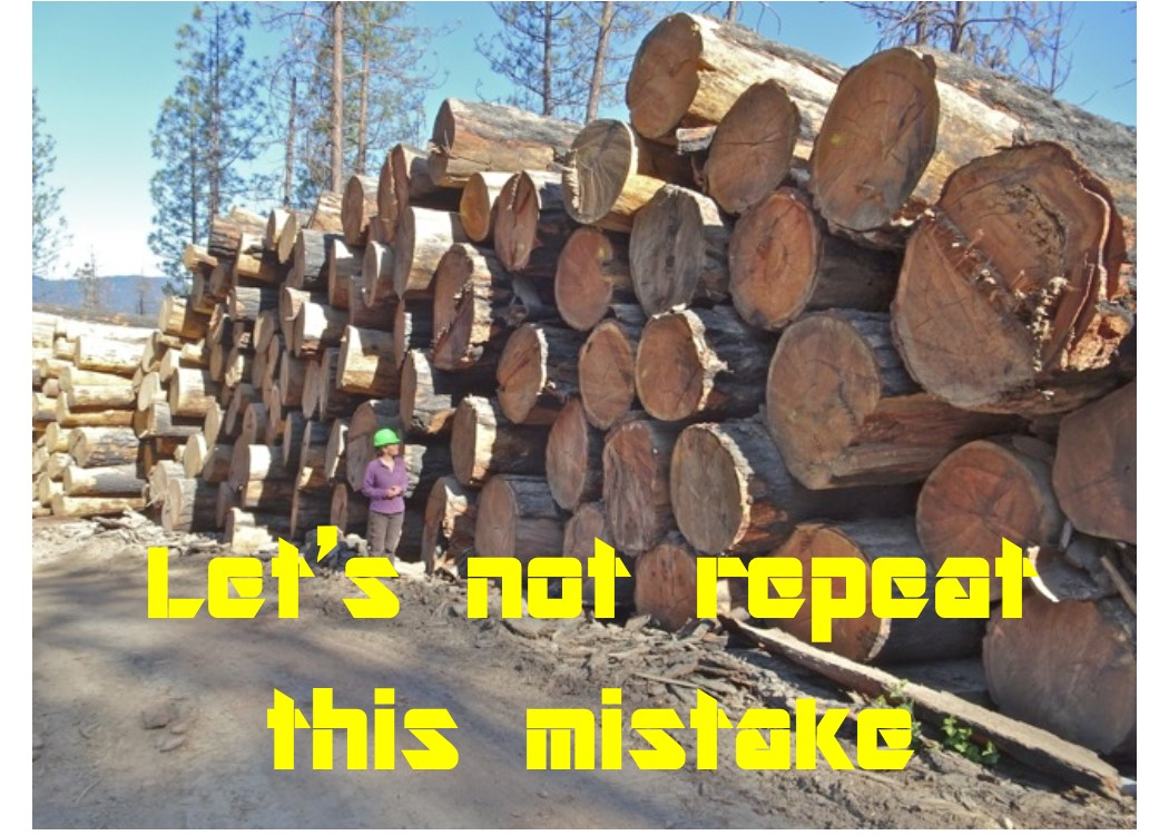 """Westside """"Salvage"""" Recovery Project, logs cut and sold for $.50 per thousand board foot"""