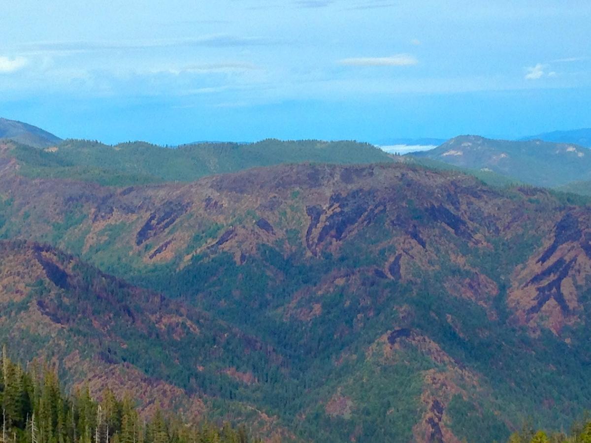 South facing Whisky Ridge
