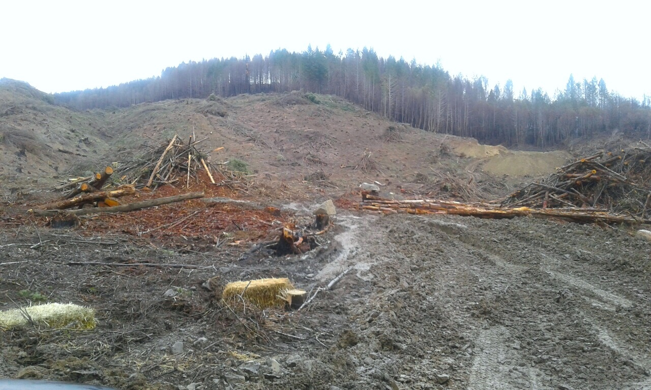 Thousands of acres have already been clearcut in the Chetco Watershed on industrial timber lands. -