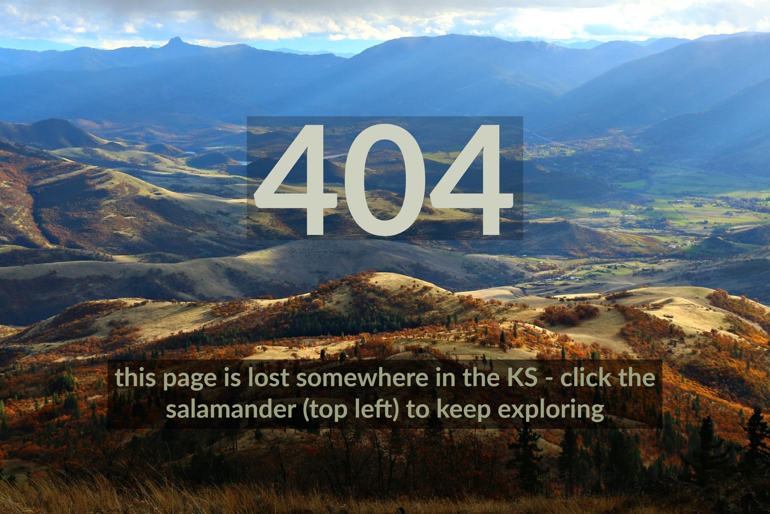404-error-page-not-found.jpg