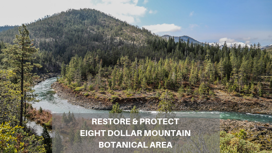 Restore & Protect Eight Dollar Mountain Botanical Area.png