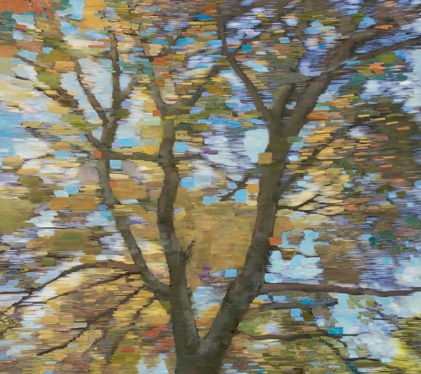 CHABOT OAK • oil and archival print on canvas • 44 by 48 inches • 2016