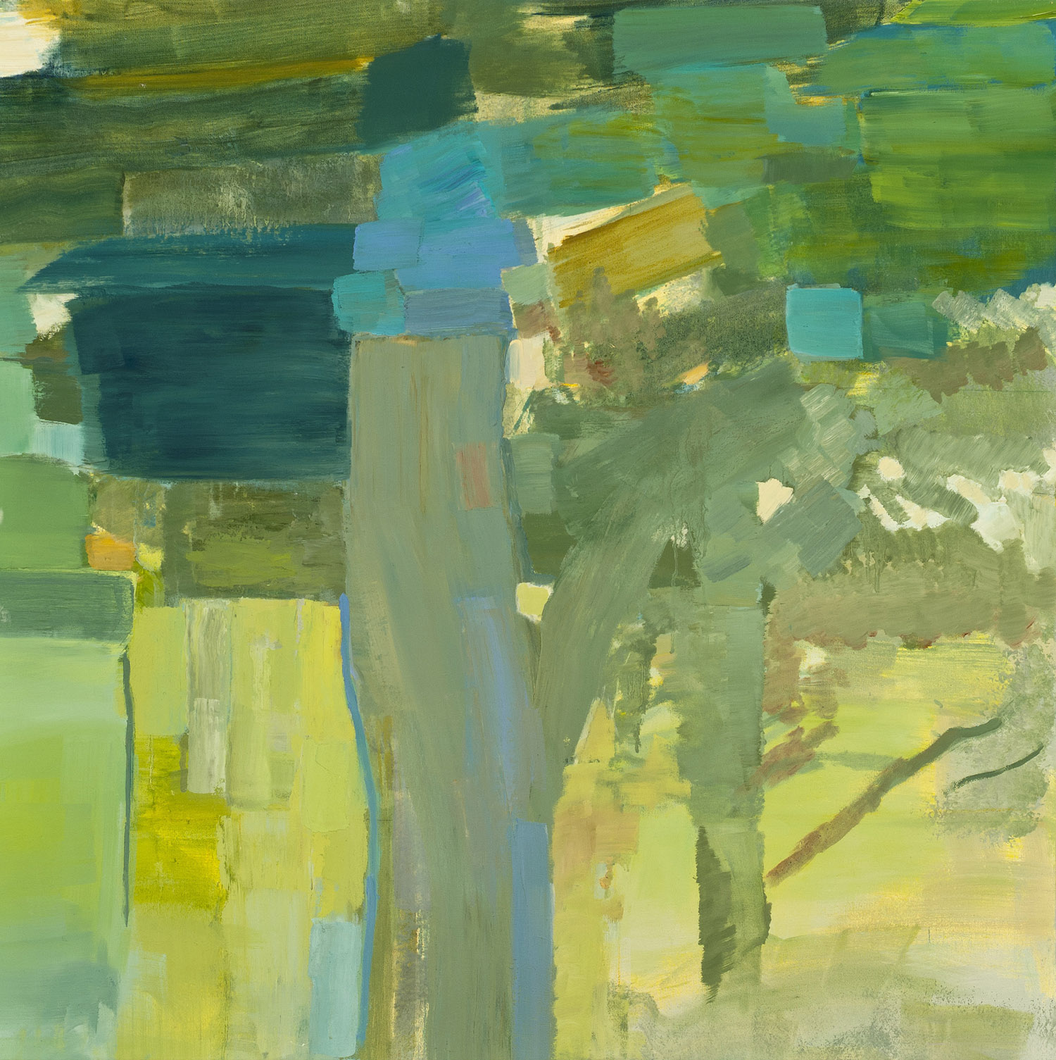 PACIFIC GROVE, SHADOW • oil on canvas • 36 by 36 inches • 2011