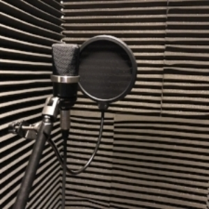 A Neumann TLM - 102 in our sound proofed vocal booth.