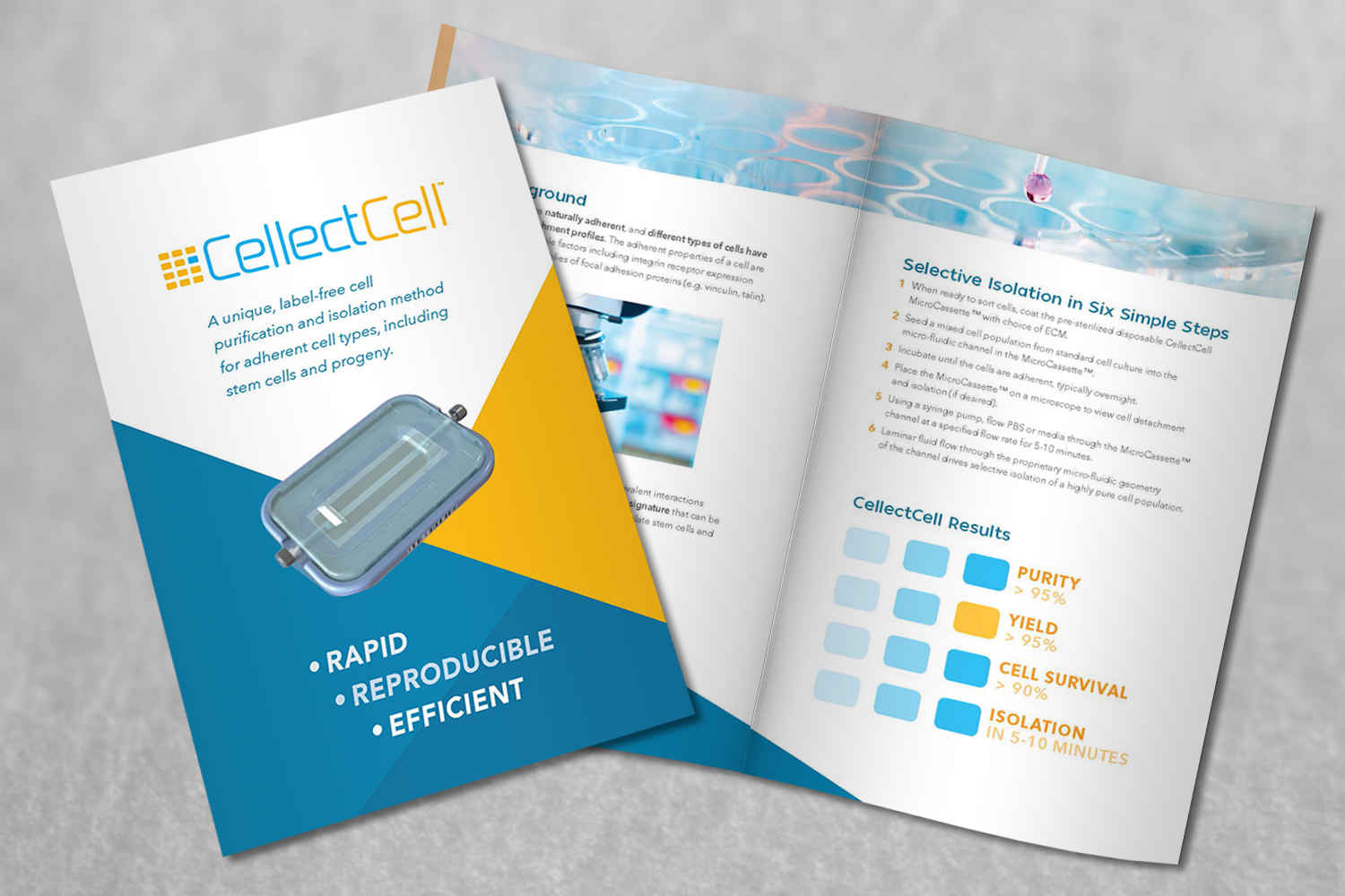 cellectcell_brochure.jpg