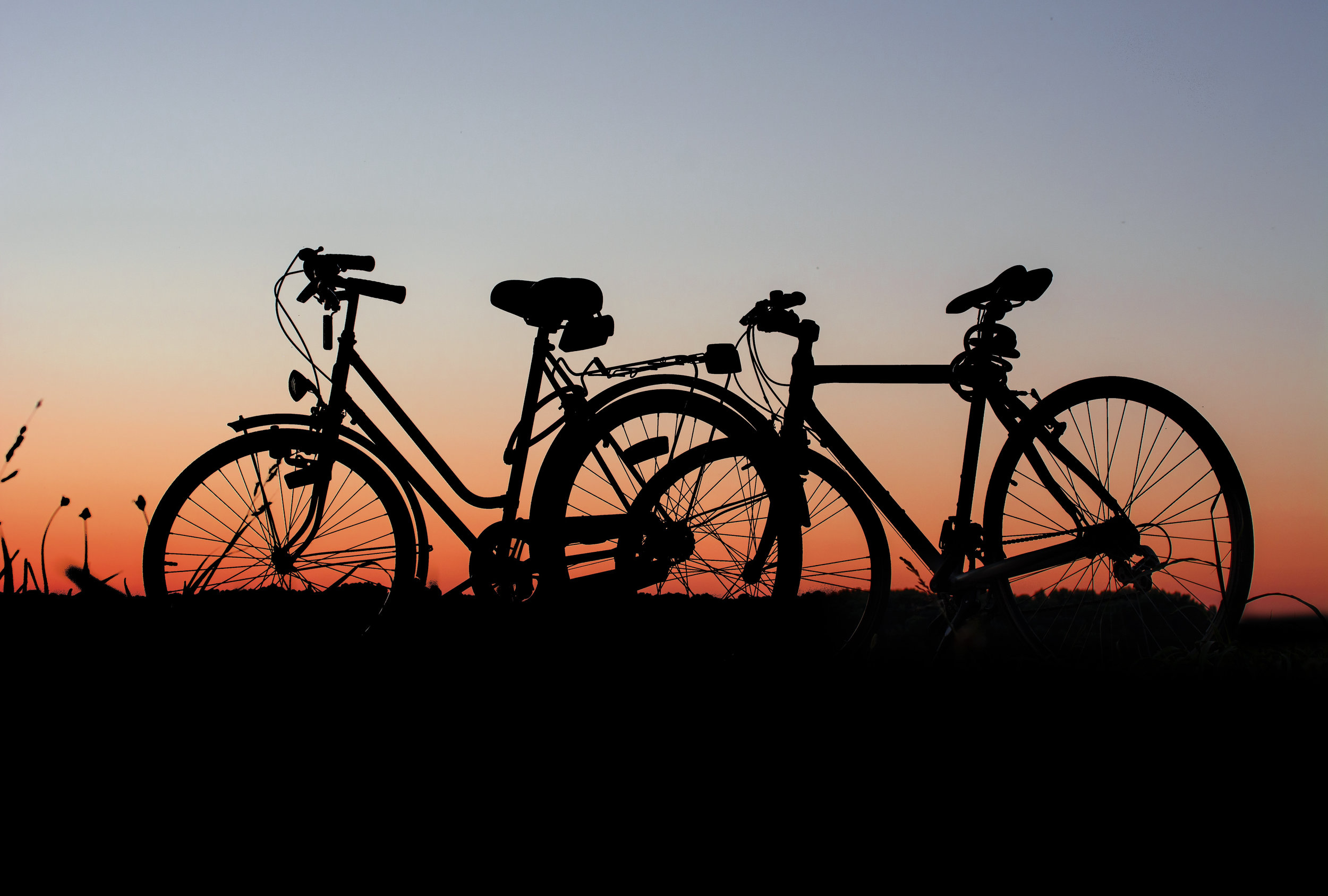 Canva - Silhouette of Bicycle on Grass.jpg
