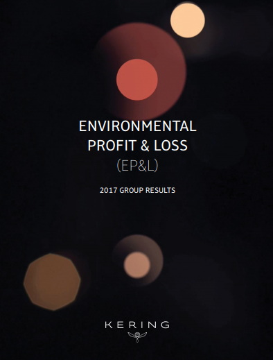 Environmental Profit & Loss.png