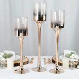 Champagne Ombre Stemmed Vase Trio