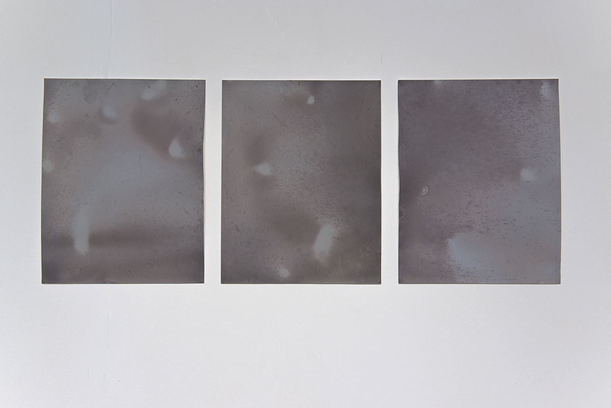 'Littoral Contact', lumen negative prints on photographic paper (photo by Paola Bernardelli)