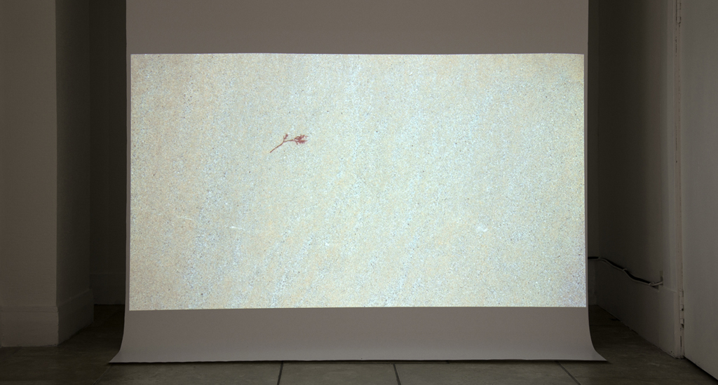 'Tide Land', video installation