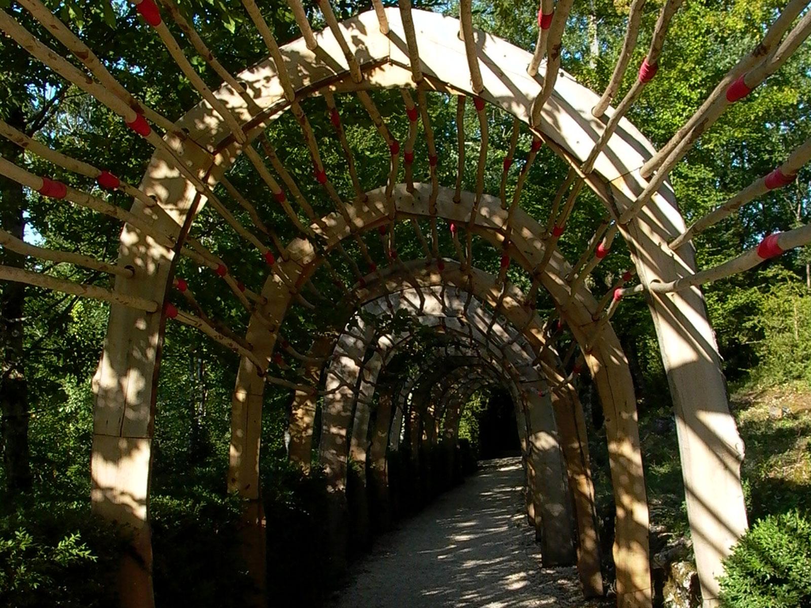 wooden archway in sunlight photo renny slade transformational coaching coach cheltenham gloucestershire.jpg