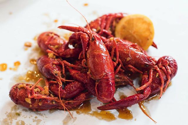 Already thinking about tomorrow's lunch (or dinner!). Live crawfish before season ends sounds just perfect 👌