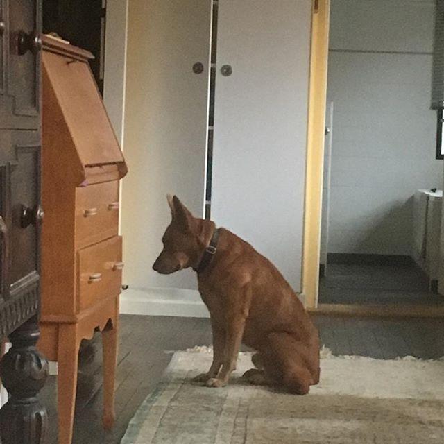 Waiting for Mum.