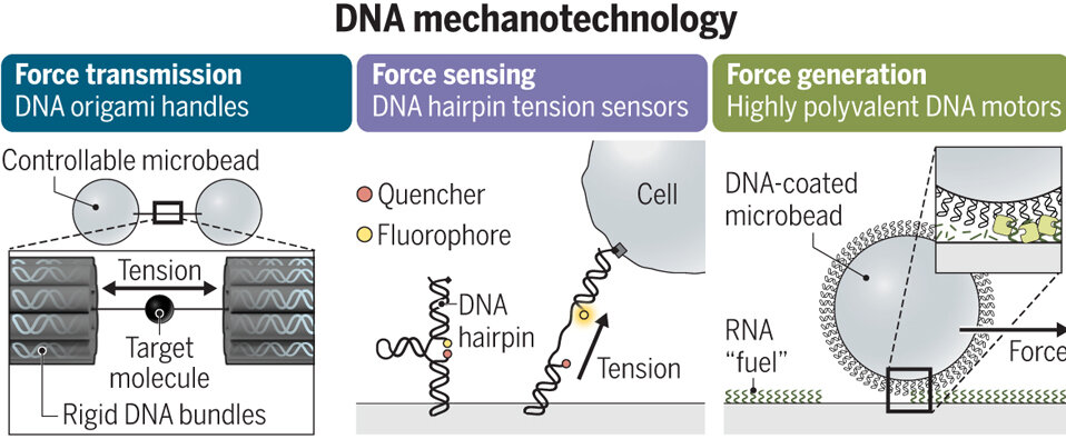 DNA mechtech graphic.jpg